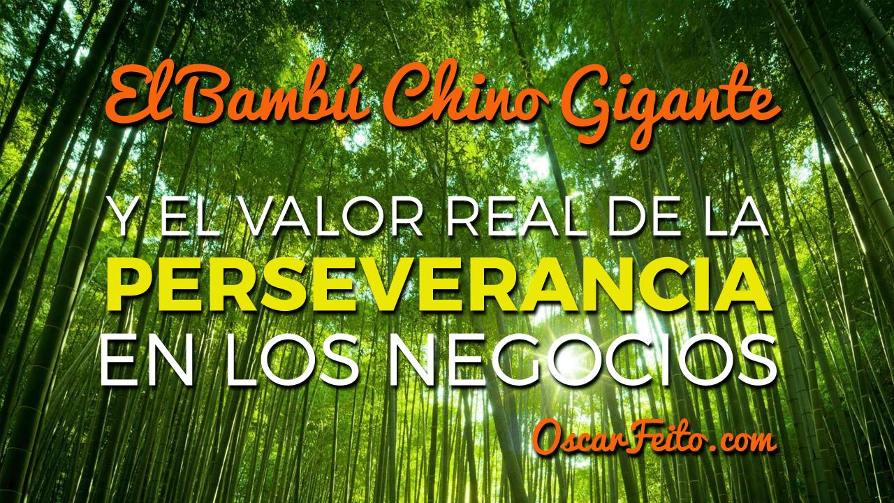 Historia Bambú Chino