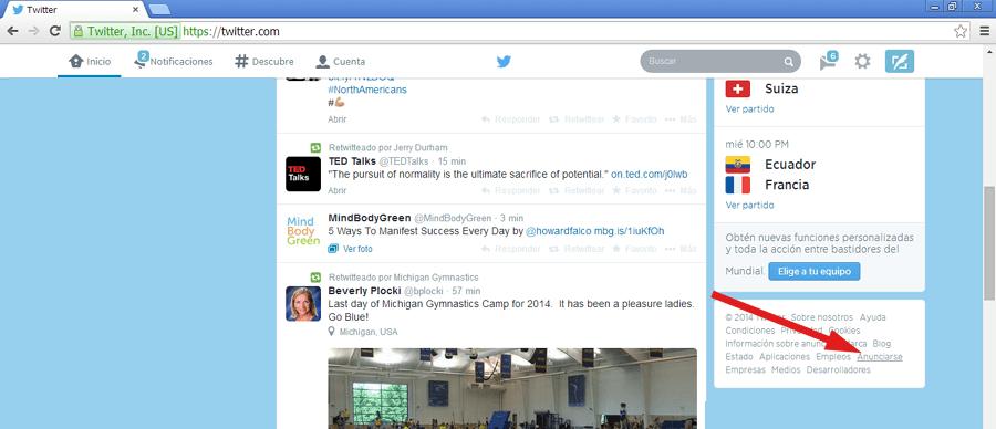 Twitter Ads Guía