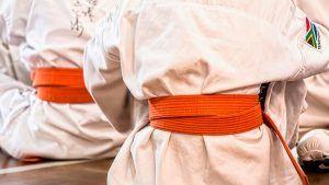 emprendedores-y-la-mentalidad-del-exito-karate-kid